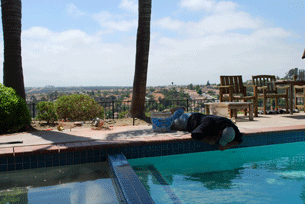 Pool tile repair in Penasquitos-1