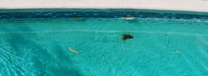 San Diego pool rust repair | What causes it and how it is repaired